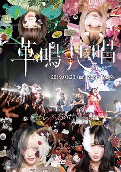 「ぜんぶ君のせいだ。Zepp Tokyo ワンマンLIVE〜革鳴共唱〜」
