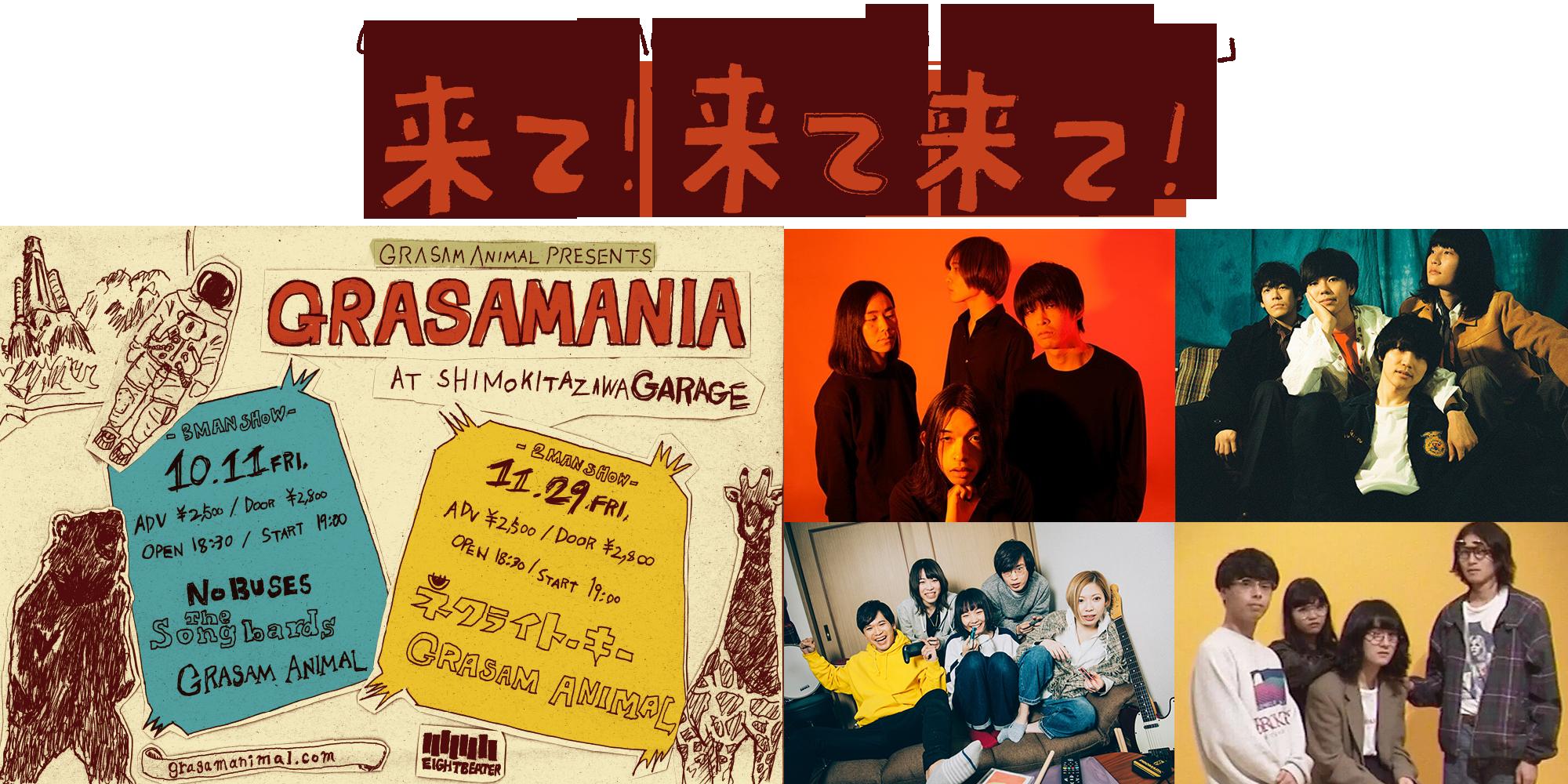 GRASAM ANIMAL 2ヶ月連続企画「GRASAMANIA」『来て!来て来て!』
