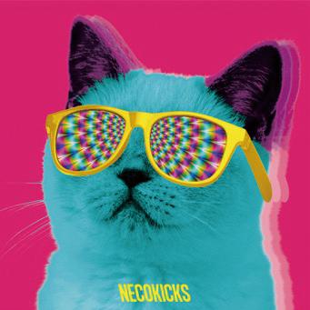 Necokicks takumi di ga online for Progettista di garage online