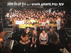 新潟GOLDEN PIGS