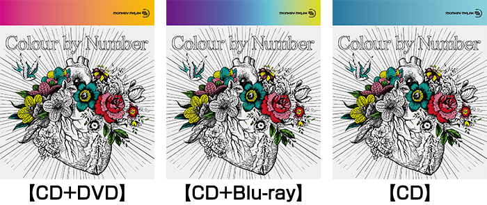 MONKEY MAJIK「Colour by Number」