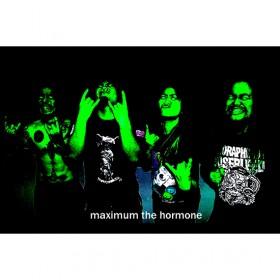 マキシマム ザ ホルモンの画像 p1_4